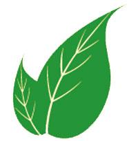 balık-pulu-hastalığına-faydalı-gelen-bitkiler